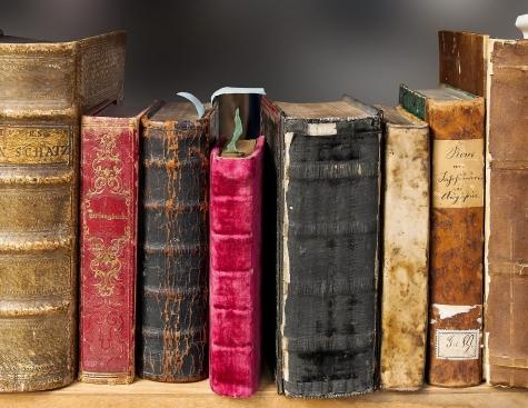Die Giganten der Weltliteratur
