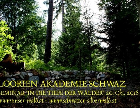 """Seminar """"In die Tiefen der Wälder"""""""